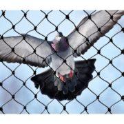anti birds nets hyderabad