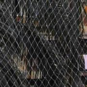 birds-protection-nets-984